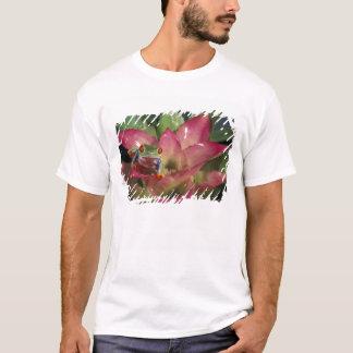 Rot-mit Augen Baumfrosch Agalychnis callidryas) T-Shirt