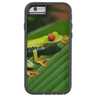 Rot-mit Augen Frosch Baum des tropischen Tough Xtreme iPhone 6 Hülle