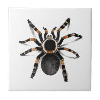 Rot mit einem Band versehene Tarantula-Spinne Keramikfliese