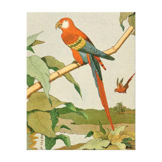 Rot-und-Grüner Macaw-Dschungel-Papagei Leinwanddruck