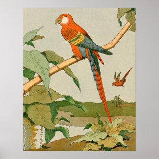 Rot-und-Grüner Macaw-Dschungel-Papagei Poster