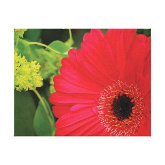 Rote Blume des schönen Nahaufnahme-Fotos gegen Leinwanddruck