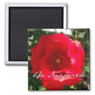 Rote Blüten-Inspiration Quadratischer Magnet