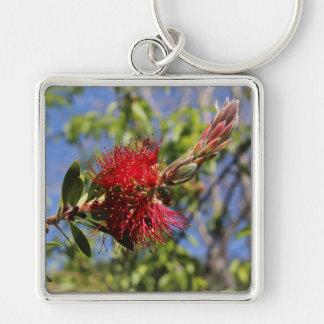 Rote Bottlebrush-Blume Keychain Schlüsselanhänger