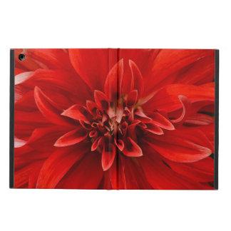 Rote Dahlie-Blume