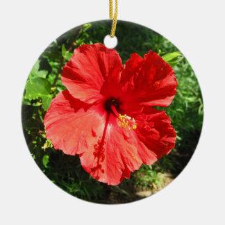 Rote Hibiskus-Blumen-Fotografie von Hawaii Keramik Ornament