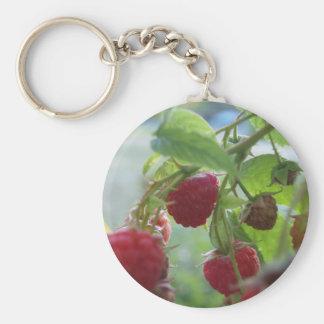 Rote Himbeeren Schlüsselanhänger