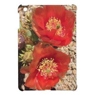 Rote Kaktus-Blume iPad Mini Hülle