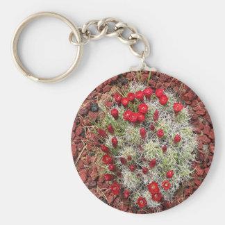 Rote Kaktus-Blumen, Utah, USA Schlüsselanhänger