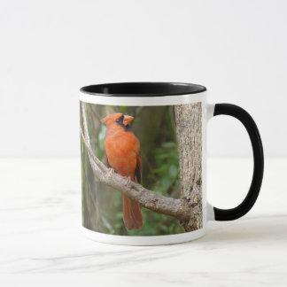 Rote Kardinals-Vogel-Tasse Tasse