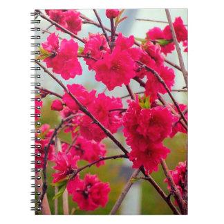 Rote Kirschblüte Spiral Notizbuch