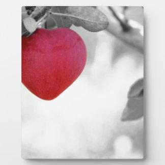 Rote Liebe Fotoplatte