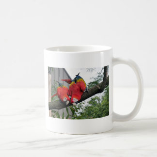 Rote Macaws 1.JPG Kaffeetasse
