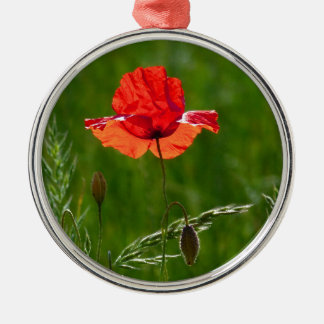 Rote Mohnblume im Sommer Rundes Silberfarbenes Ornament