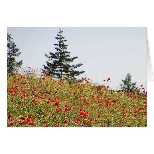 Rote Mohnblumen auf einer Abhangkarte Karte