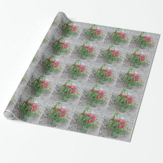 Rote Paprikaschoten, die an der Pflanze hängen Geschenkpapierrolle