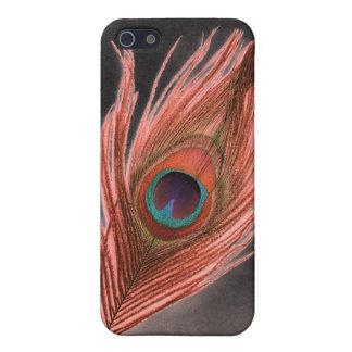 Rote Pfau-Feder auf Schwarzem iPhone 5 Cover