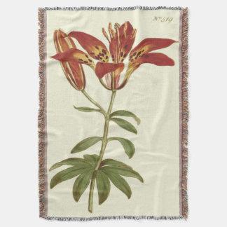 Rote Philadelphian Lilien-Illustration Decke