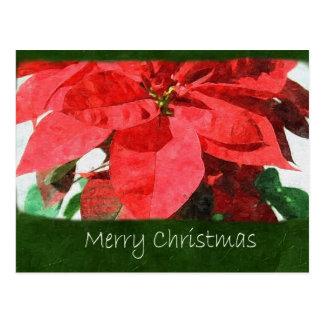 Rote Poinsettias 1 - frohe Weihnachten Postkarte