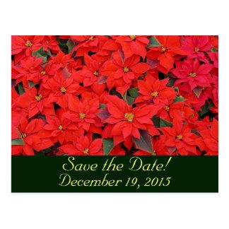Rote Poinsettias Save the Date Postkarte