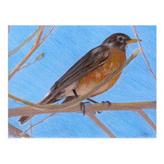 Rote Robin-Kunst-Natur-Postkarte Postkarte