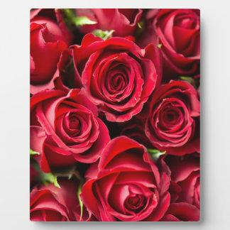 Rote Rosen des Valentines Tages Fotoplatte