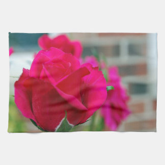 Rote Rosen Küchentuch