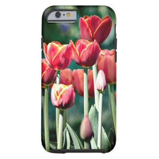 Rote Tulpe iPhone 6 stoßdämpfende Zwischenlage Tough iPhone 6 Hülle