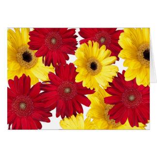 Rote und gelbe Gerber Gänseblümchen-Freude Karte