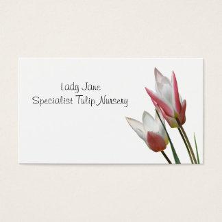 Rote und weiße Lilie blühte Tulpen Visitenkarte