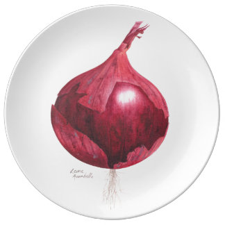Rote Zwiebel-botanische dekorative Platte Teller