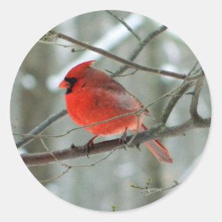 Roter Aufkleber des Kardinals-(Mann)