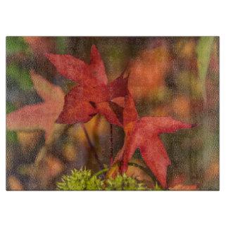Roter Herbst verlässt Glas Schneidebrett