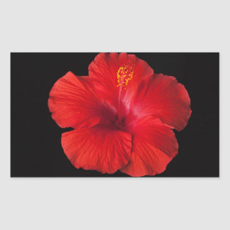 Roter Hibiskus-tropische Blumen-Blumen mit Blumen Rechteckiger Aufkleber