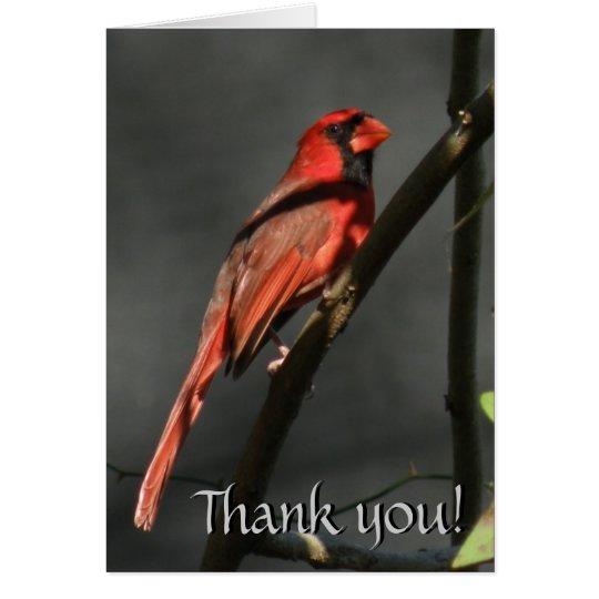Roter Kardinals-Vogel danken Ihnen Karte