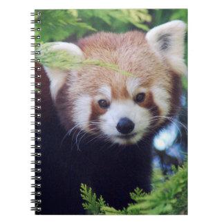 Roter Panda Spiral Notizblock