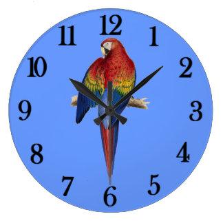 Roter Papagei Blau-Hintergrund Große Wanduhr