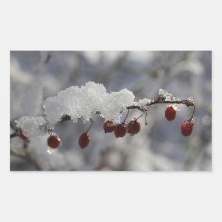 Rotes Beeren-Blatt von 4 Rechteck-Aufklebern Rechteckiger Aufkleber