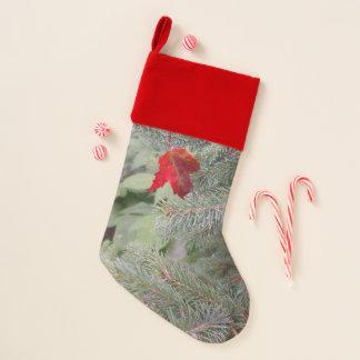 Rotes Blatt auf Kiefer-Niederlassung Weihnachtsstrumpf