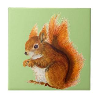 Rotes Eichhörnchen gemalt in der Kleine Quadratische Fliese