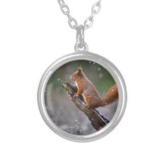 Rotes Eichhörnchen in Schottland Versilberte Kette