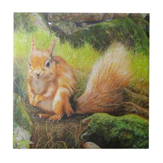 Rotes Eichhörnchen-Malerei Kleine Quadratische Fliese