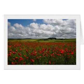 Rotes Mohnblumen-Feld Dorsets Karte
