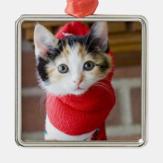 Rotes Weihnachtskätzchen Quadratisches Silberfarbenes Ornament