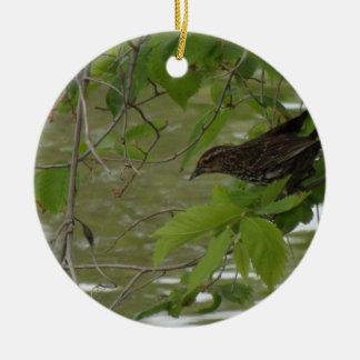 rotgeflügeltes schwarzes Vogel Fischen von einem Keramik Ornament