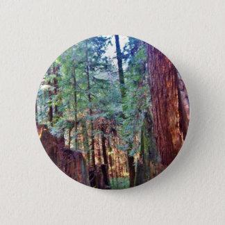 Rotholz-Reihe #2: Durch die Bäume Runder Button 5,1 Cm