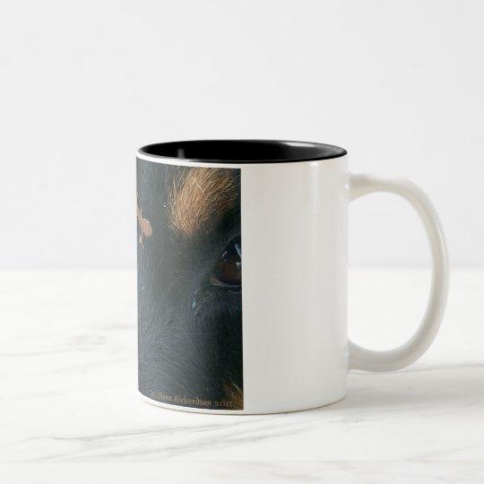 Rottweiler u. Salamander-Tasse Zweifarbige Tasse