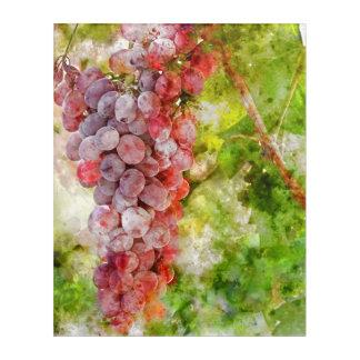 Rotwein-Trauben auf der Rebe Acryl Wandkunst