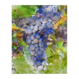 Rotwein-Trauben auf Rebe Acryldruck