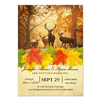 Rotwild in der Herbstsonne rays Einladungen